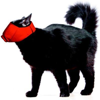 Náhubok pre mačku zakrýva oči, znižuje sa tak jej strach. Ilustračná fotografia, zdroj – internet.